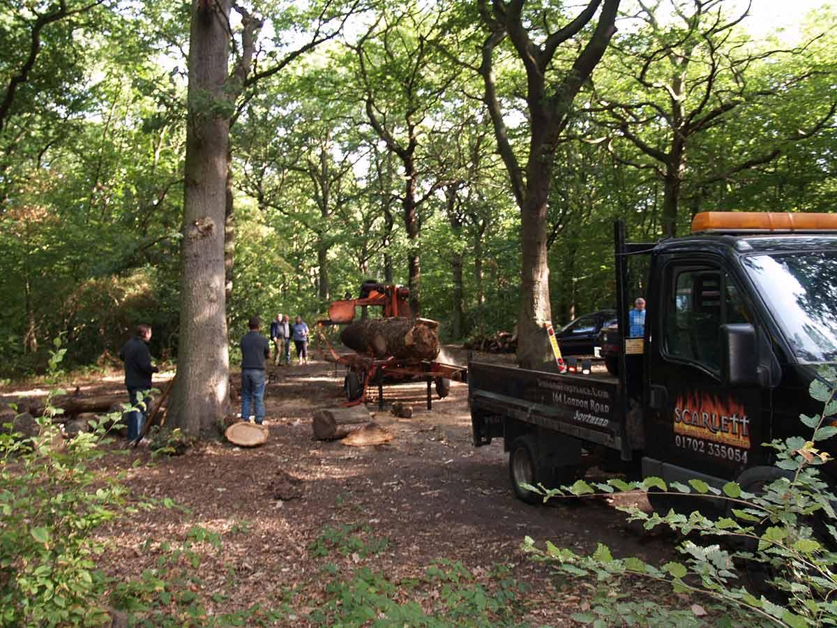 slicing oak for furniture